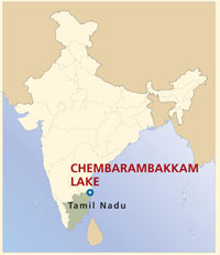 CHEMBARAMBAKKAM LAKE