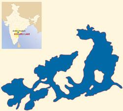 kolleru lake in india map Kolleru Lake kolleru lake in india map