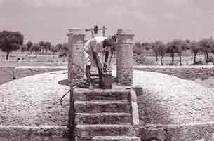 traditional rainwater harvesting